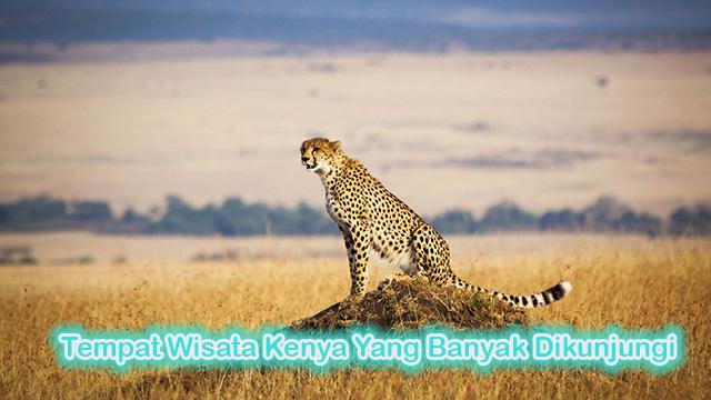 Tempat Wisata Kenya Yang Banyak Dikunjungi