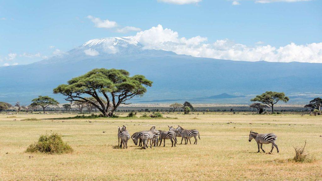 5 Hal Penting Yang Harus Anda Ketahui Sebelum Datang ke Kenya
